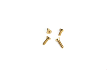 MR33 Flathead Brass Screw M3x10